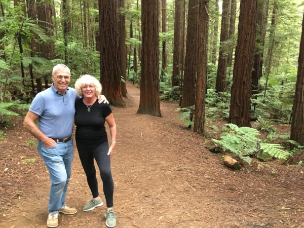 """""""Tramping"""" in the forest. I like the local word for a good walk in the countryside!"""