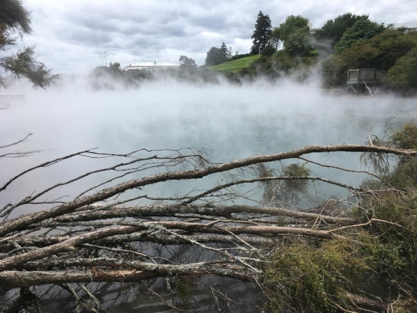 We took a walk through the thermal park in the center of town - not your average garden setting.