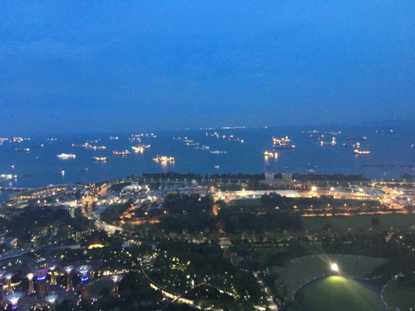 The internet could provide a better shot of our view from the Top of the Marina Sands, but I chose this one of mine because of all the ships in the harbor so I can explain the image below.