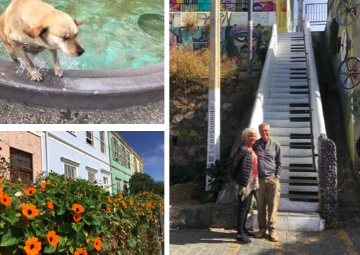 A trip to Valparaiso by bus got us out of the city. The colorful art, houses, happy street dogs and a much better seafood lunch at  Fauna  made it a great day out.