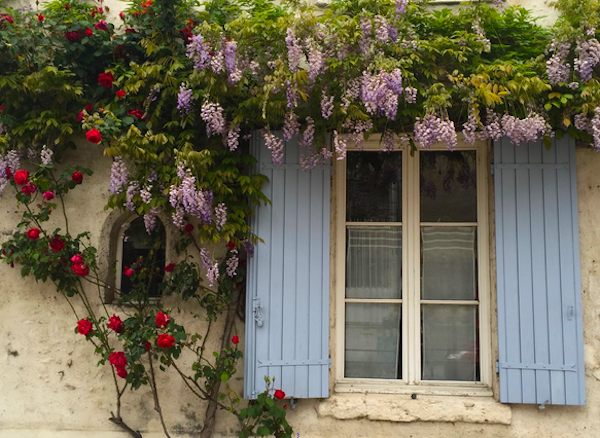We haven't been here in Spring time before and if you ever visit this part of France it is the perfect season. Everything is in bloom and wisteria drapes over almost every wall in town.