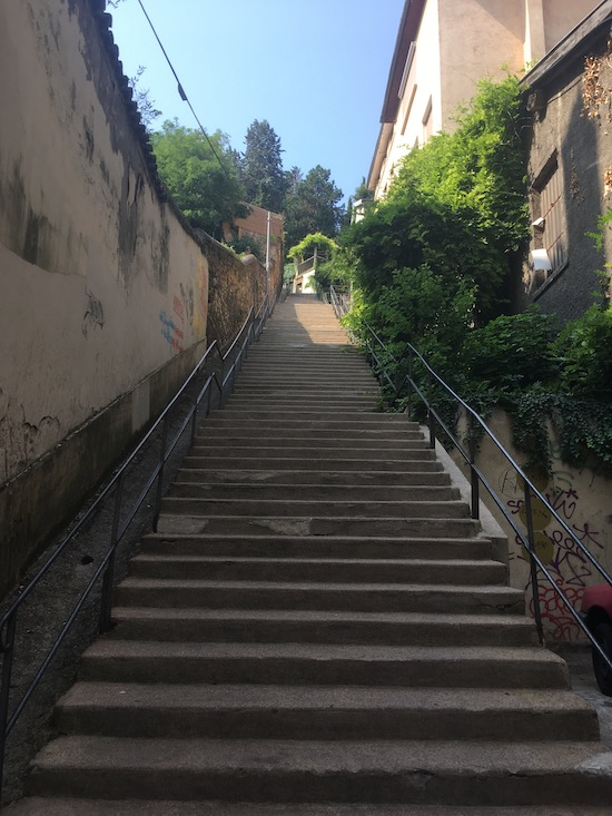 Just one of the many stairways it took to reach the top of Croix-Rousse hill where we lived.