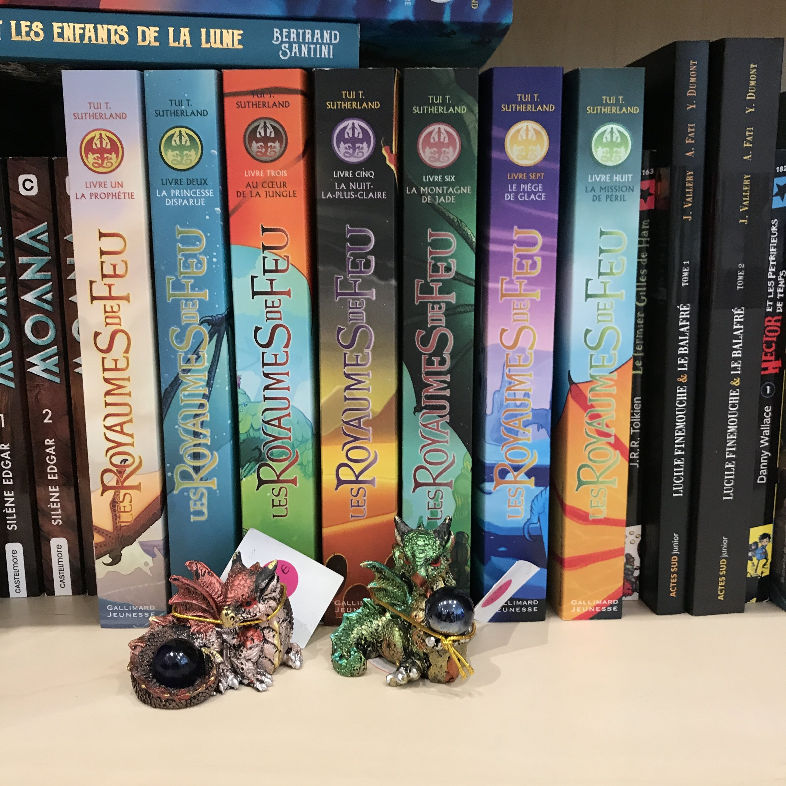 Le Nuage Vert Dragons Dr Bookworm.JPG