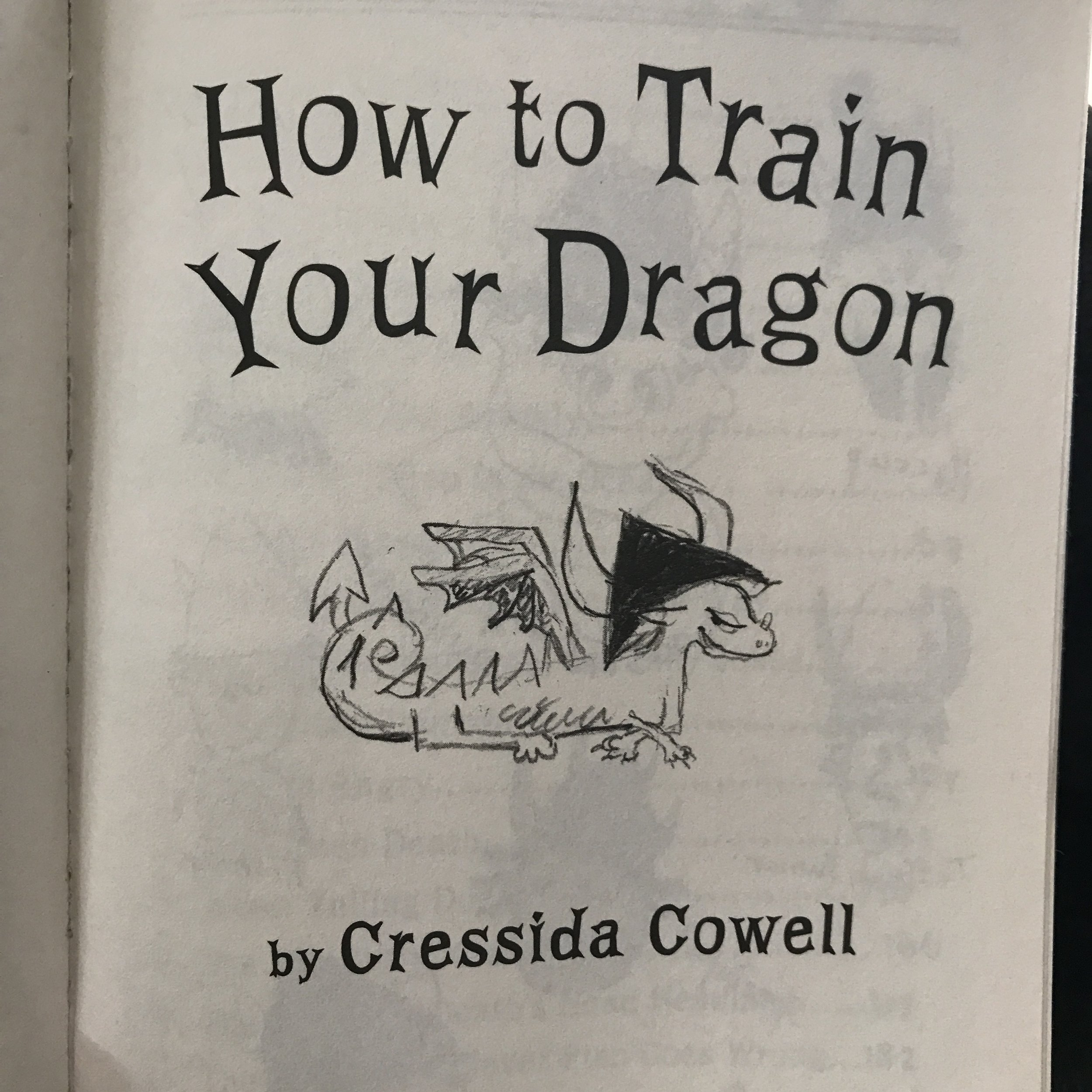 How to Train Your Dragon Excerpt1.JPG