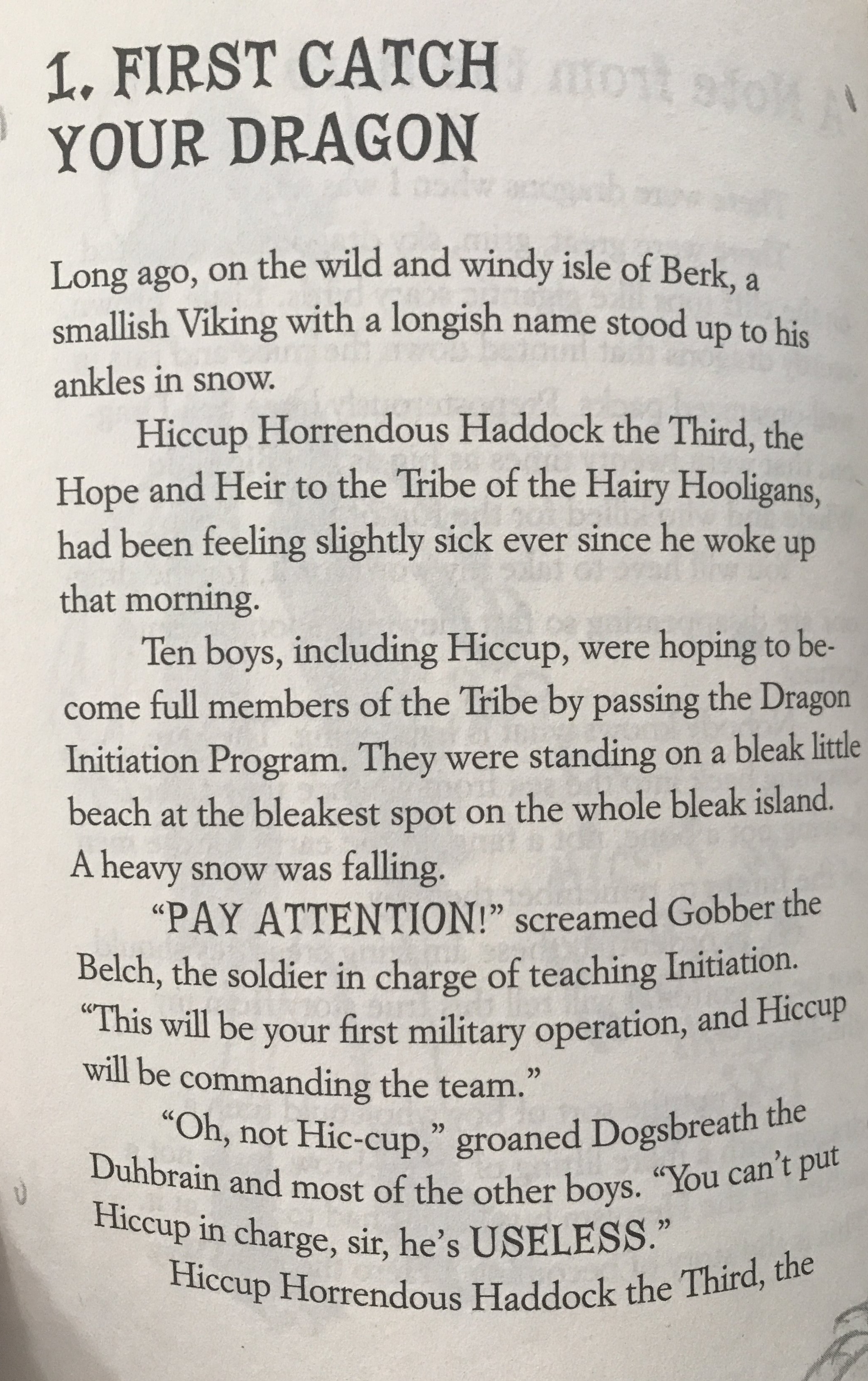 How to Train Your Dragon Excerpt4.JPG