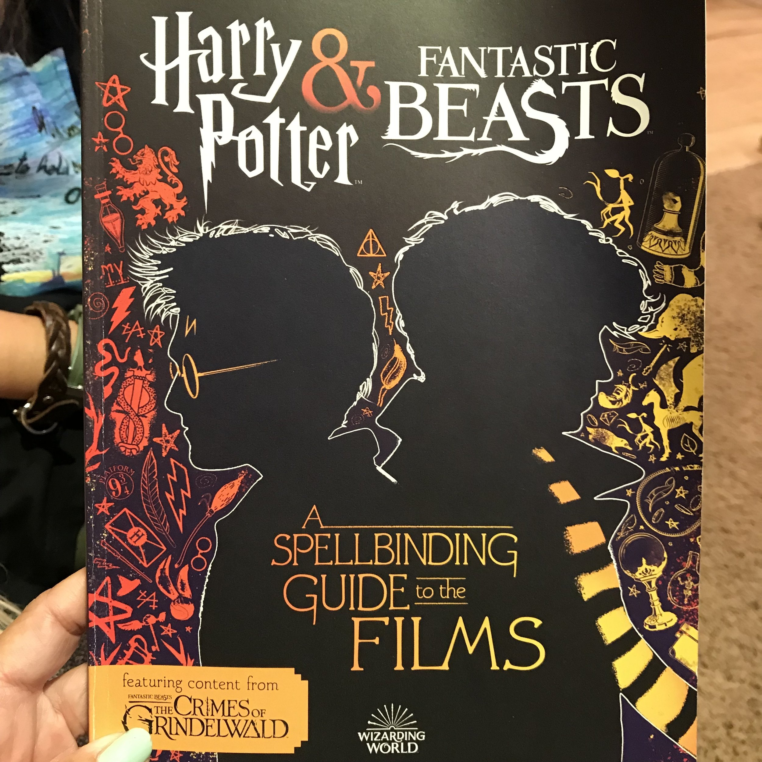 HP and Fantastic Beasts film guide Dr bookworm.jpg