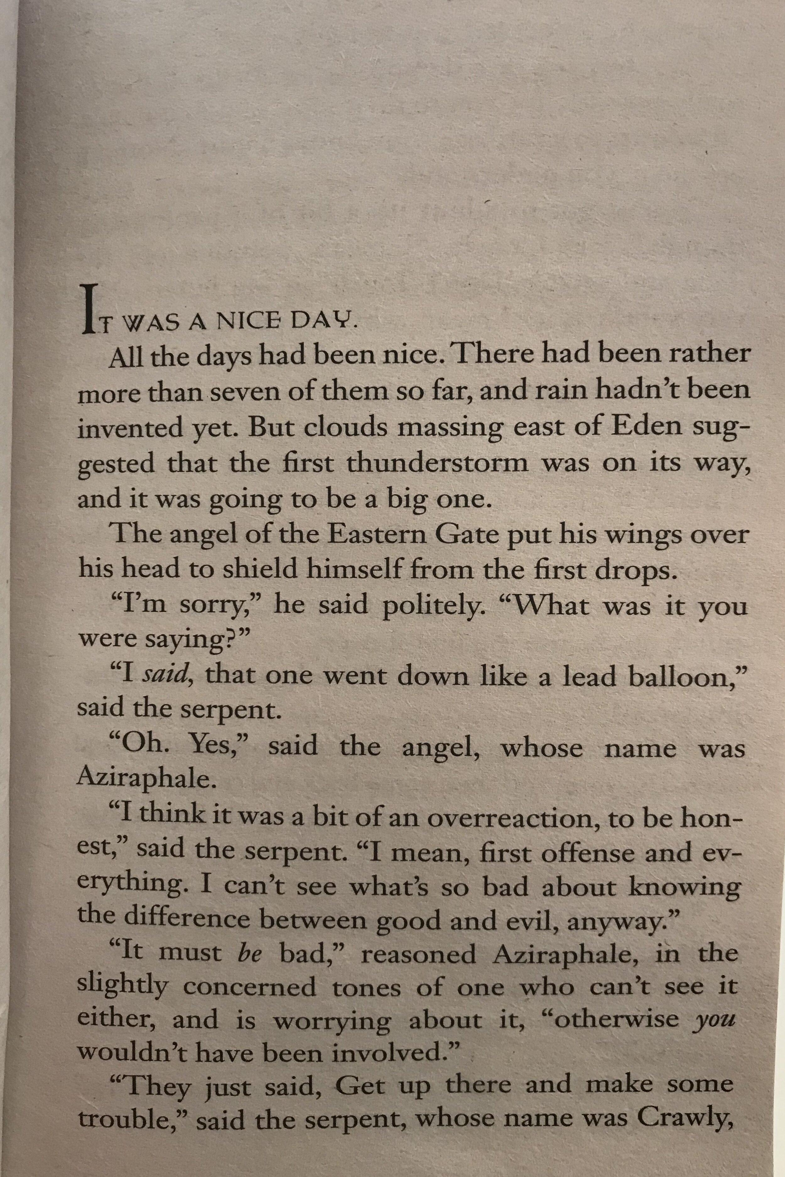 Good Omens Doctor Bookworm Excerpt 2.jpg