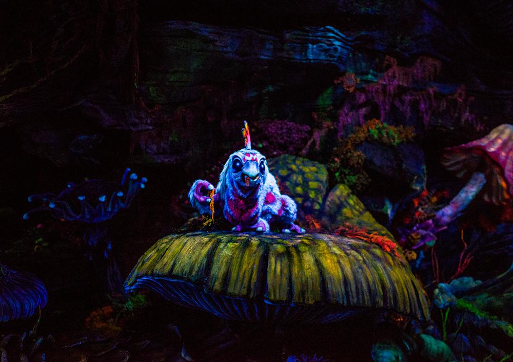 Photo courtesy of Tom Bricker at   DisneyTouristBlog.com.