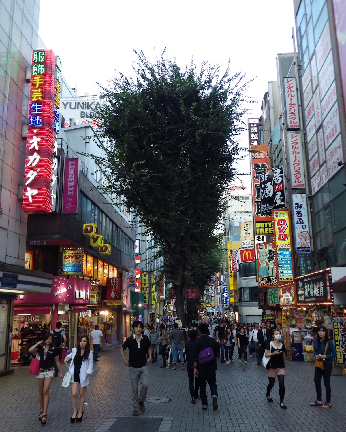 The tree-lined pedestrian street that leads from the East Exit of Shinjuku Station to Yasukuni Dori / Kabuki Central Road (a.k.a. Godzilla Road).