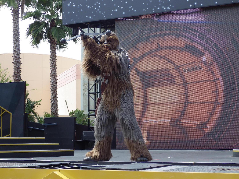 Hollywood-Studios-Star-Wars-004-3x4.jpg