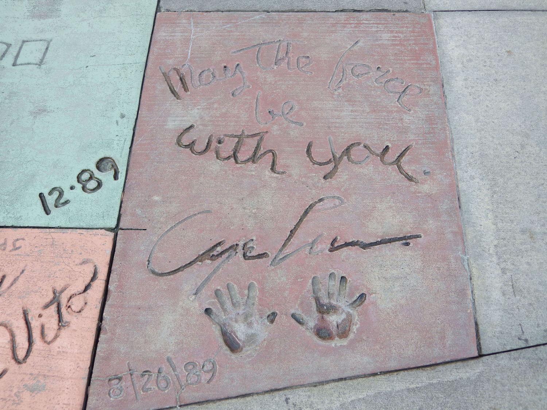 Hollywood-Studios-Star-Wars-016-3x4.jpg