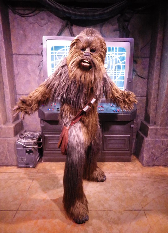 Hollywood-Studios-Star-Wars-023-13x18.jpg