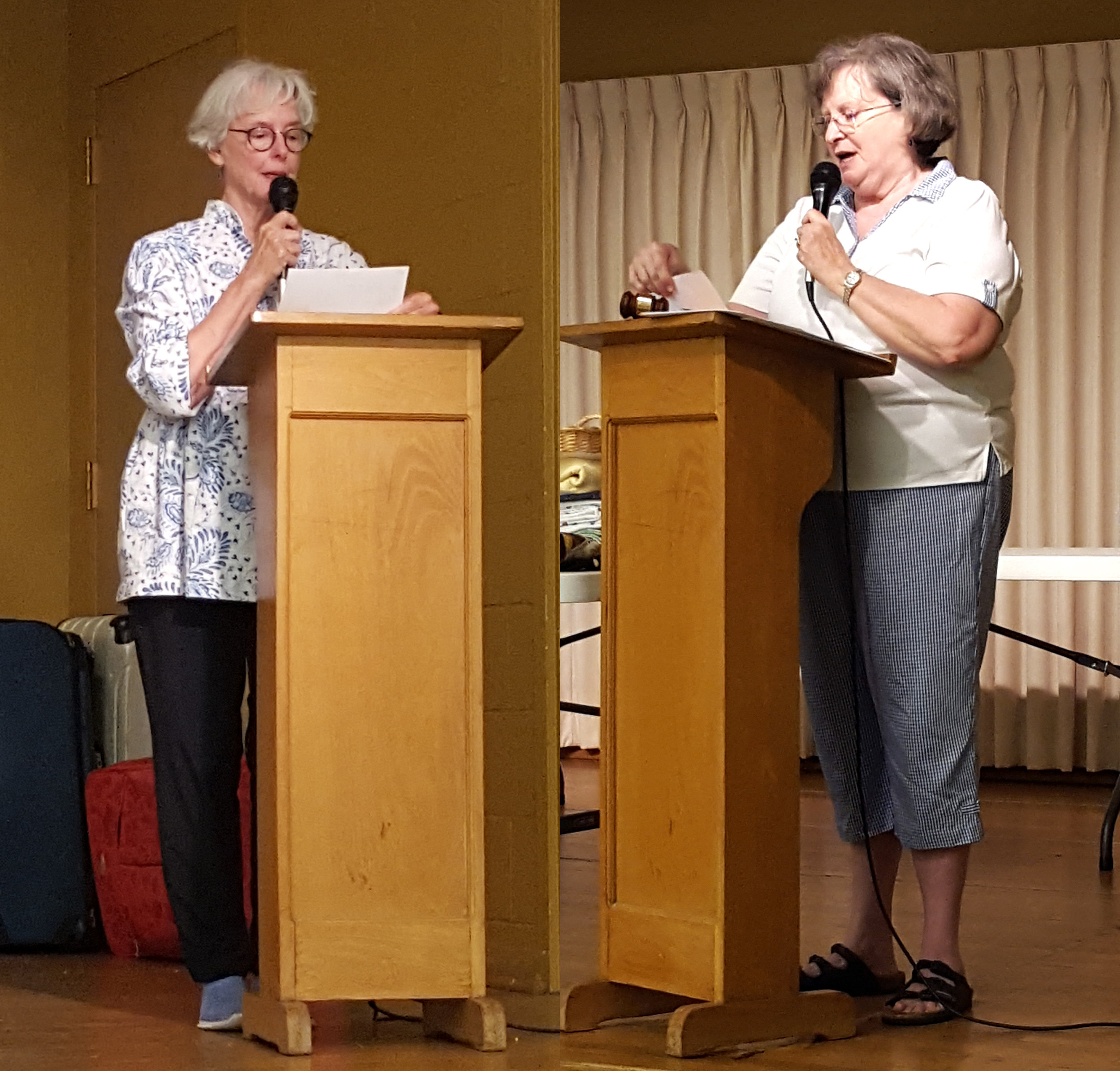 """Firsts"" - Elaine's first meeting as presidentLinda's first introduction of speaker as 1st VP"