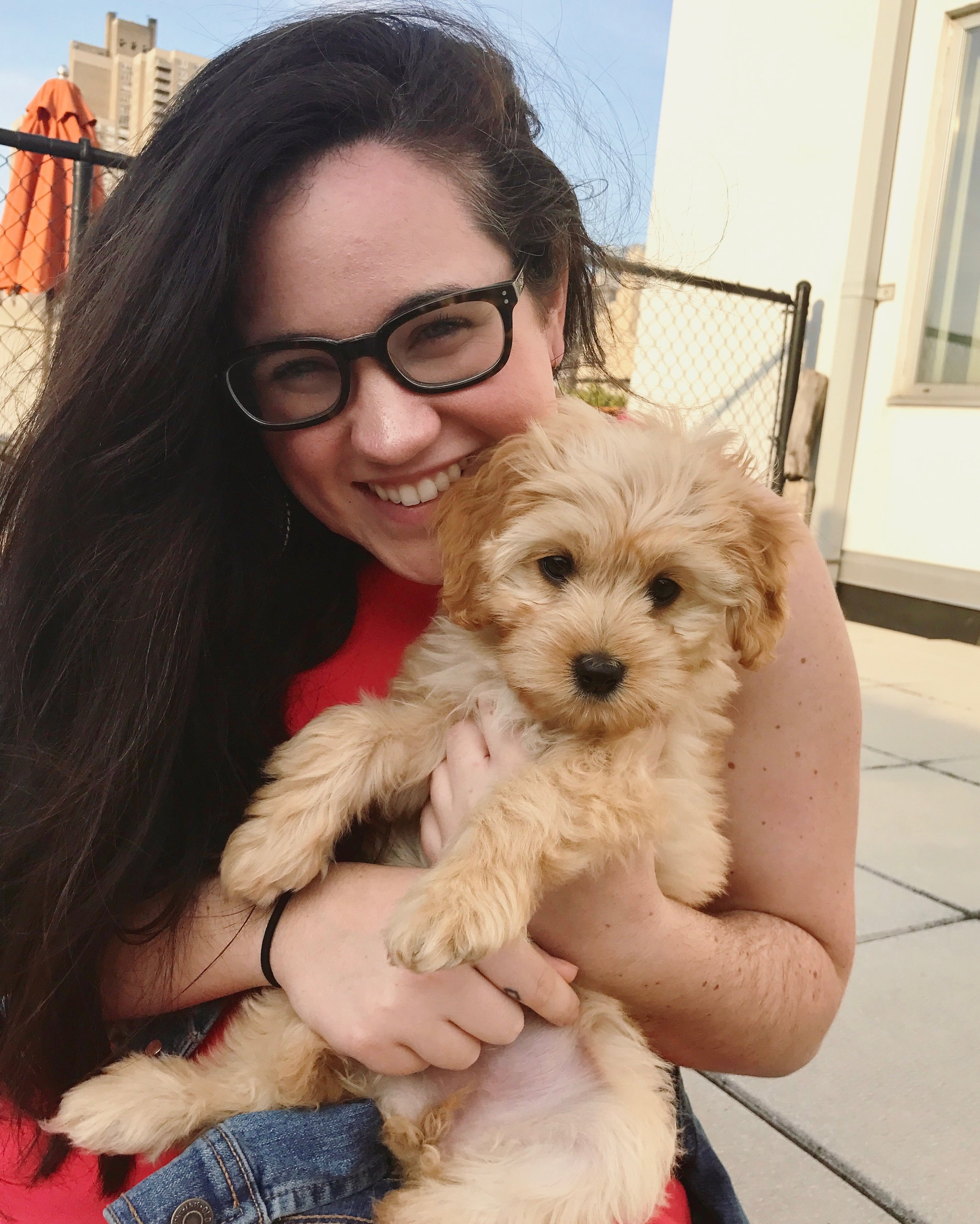my sister's puppy Rosie.jpg