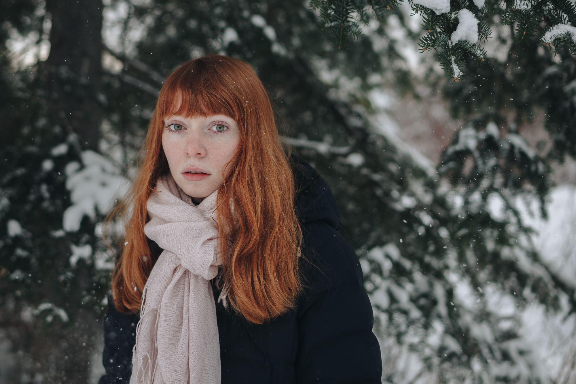 Kenneth Sterling