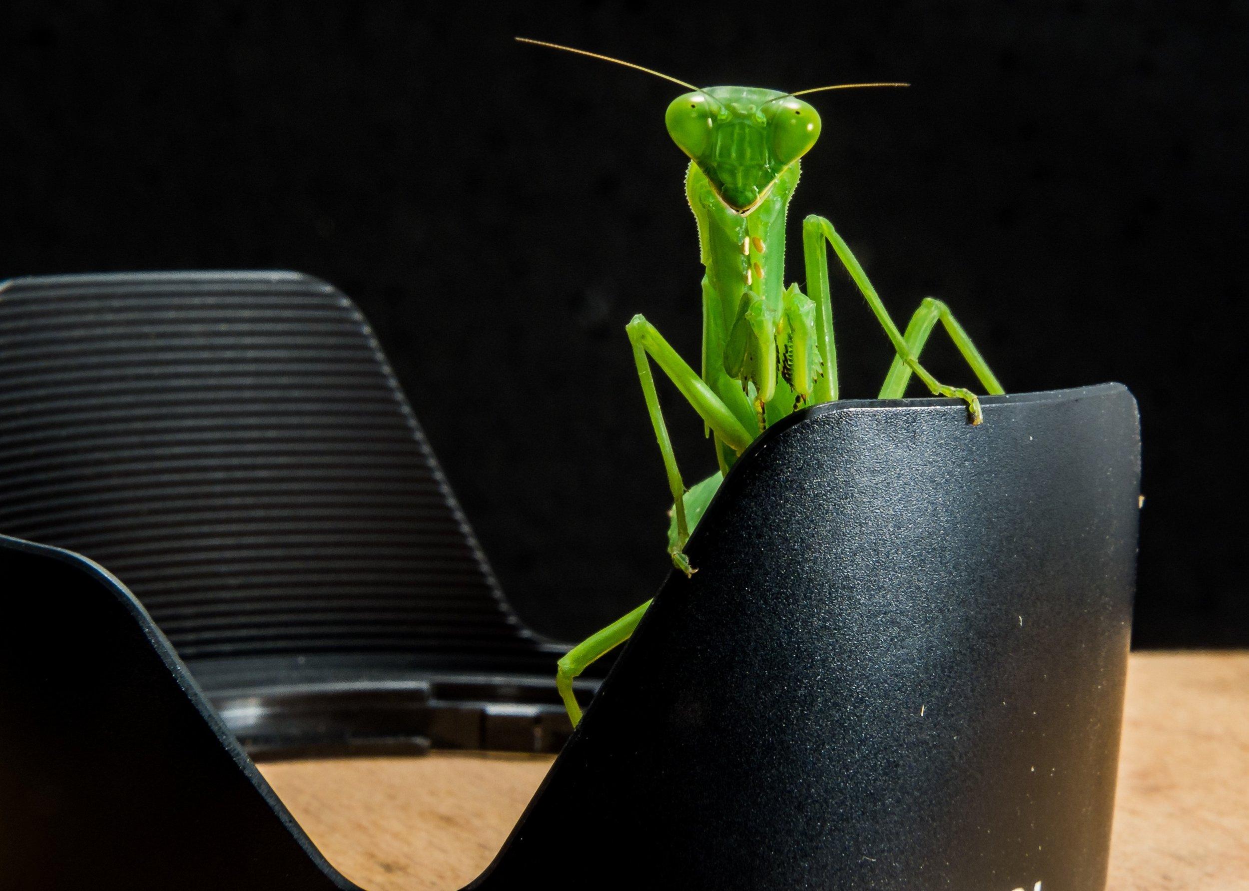 Please take a seat.