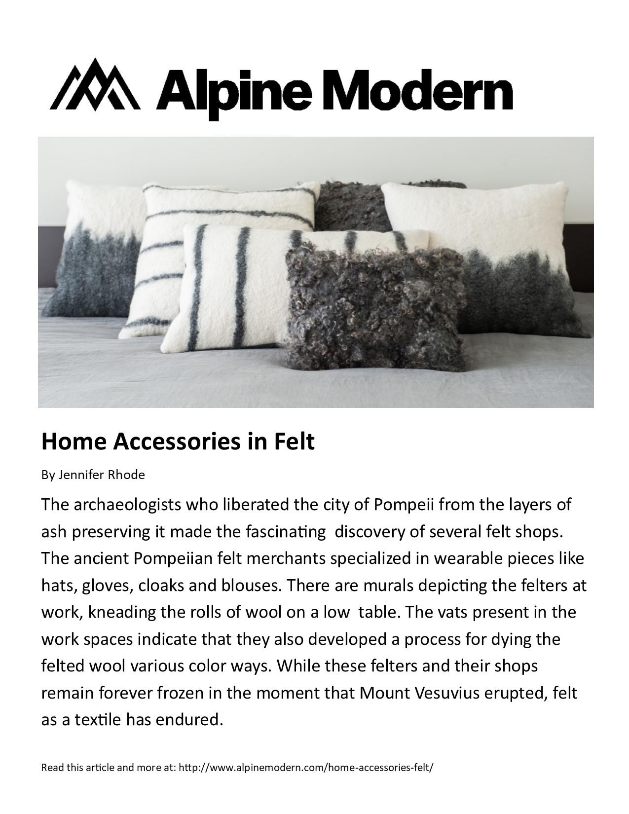 Home Accessories in Felt 06-20-17.jpg