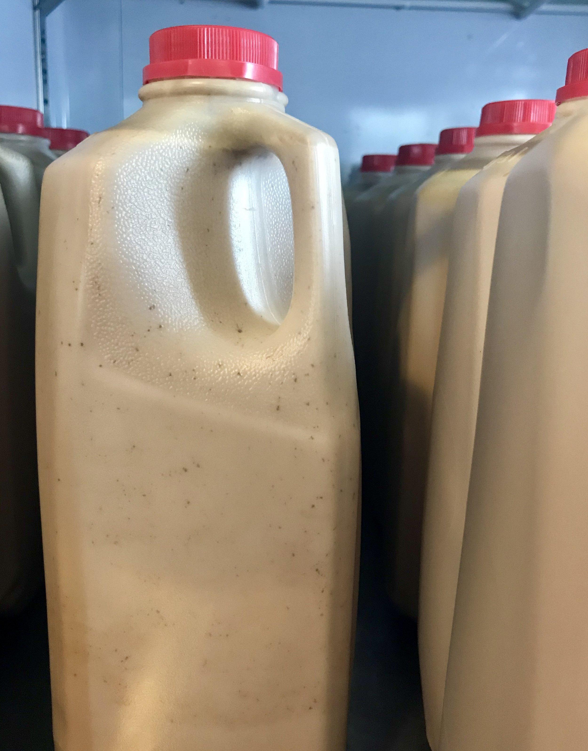 Jersey Cow Whole Chocolate Milk /  Stone Hollow Farmstead