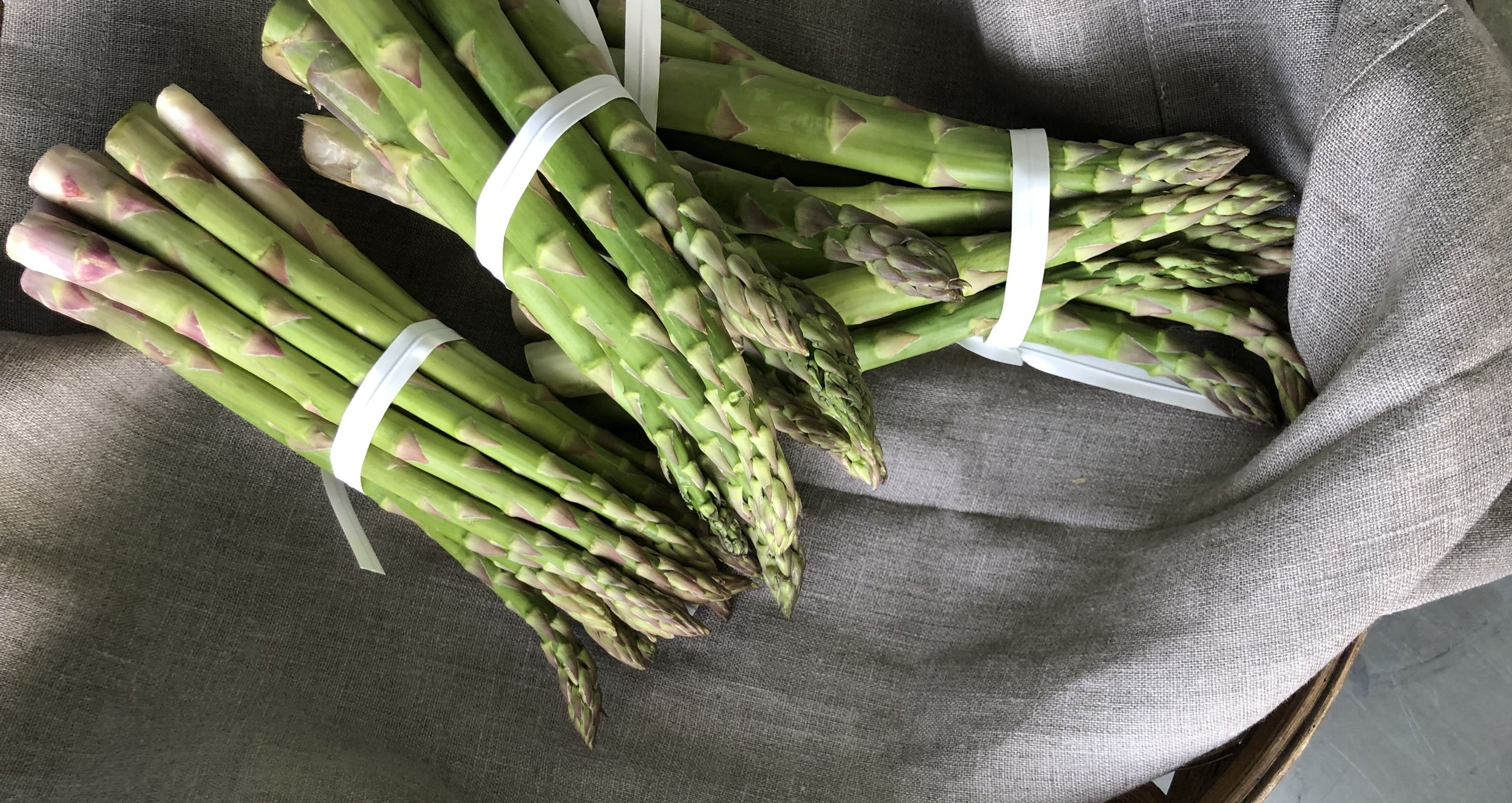 Asparagus /  Habersham Farms- Mentone, Alabama
