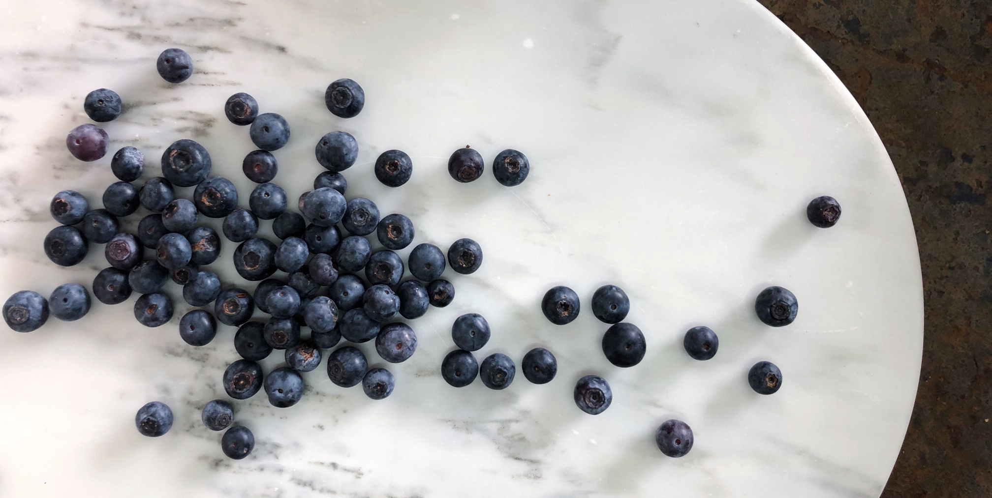 Blueberries- Stone Hollow FarmStead