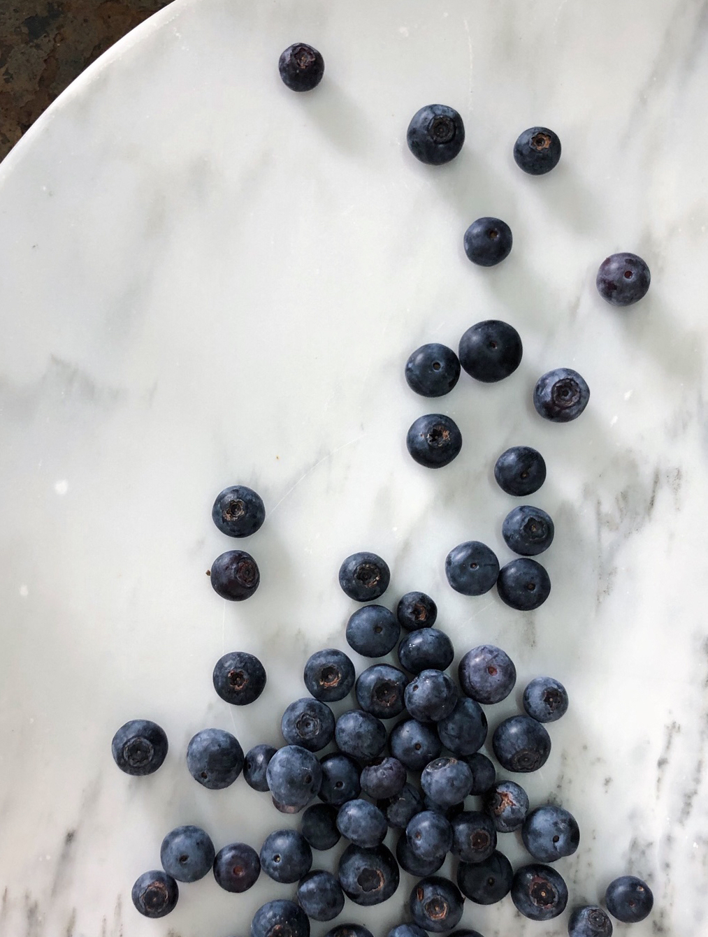 Blueberries/  Stone Hollow Farmstead - Harpersville, Alabama