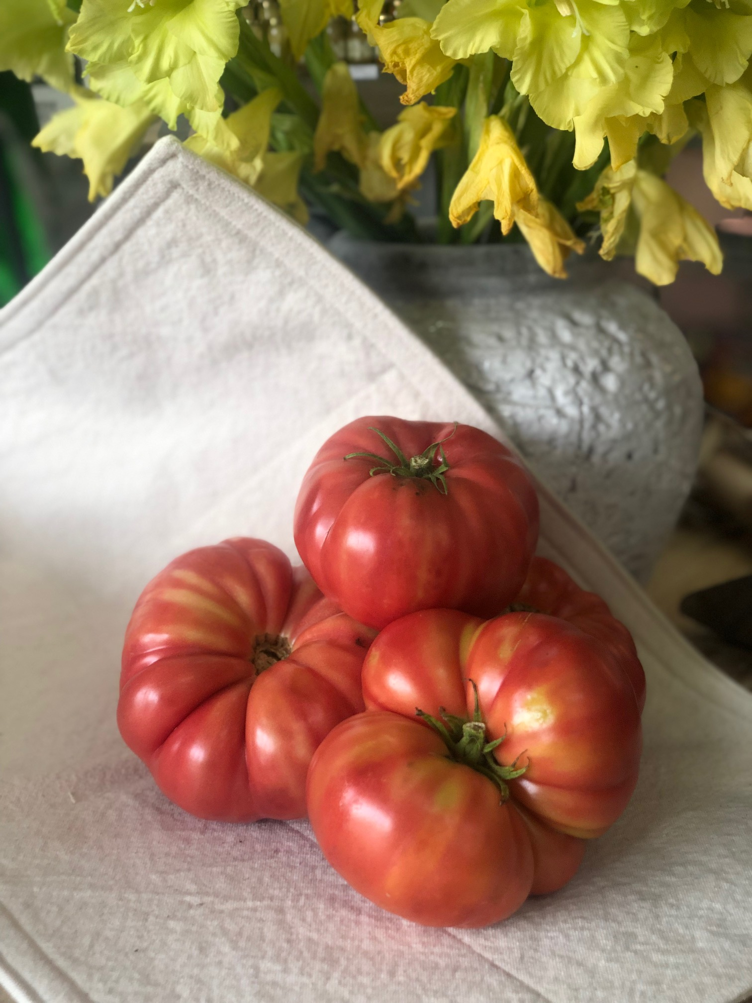 Heirloom Tomatoes /  Belle Meadow - Tuscaloosa, Alabama