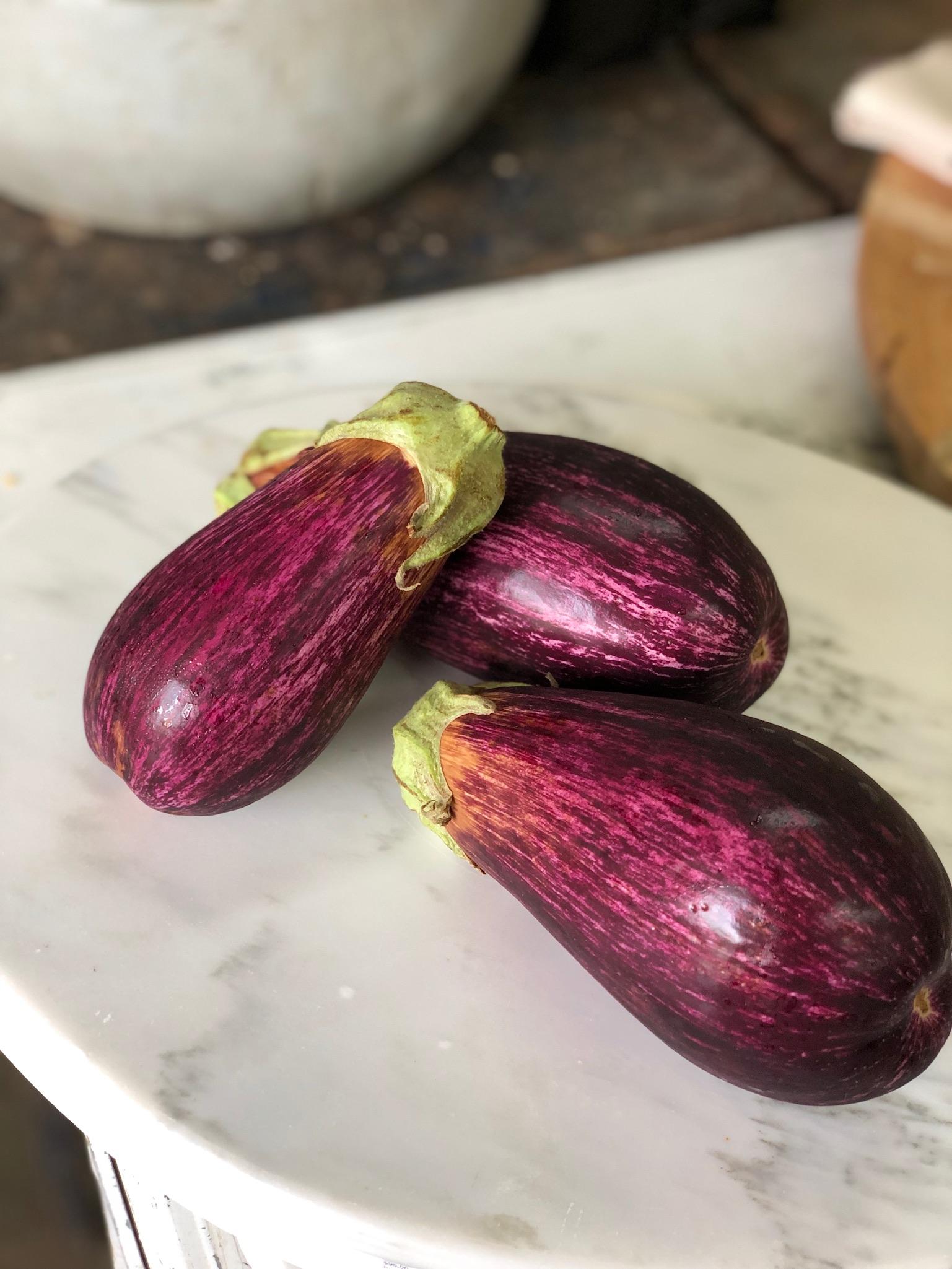 Eggplant-  Mountain Sun Farm