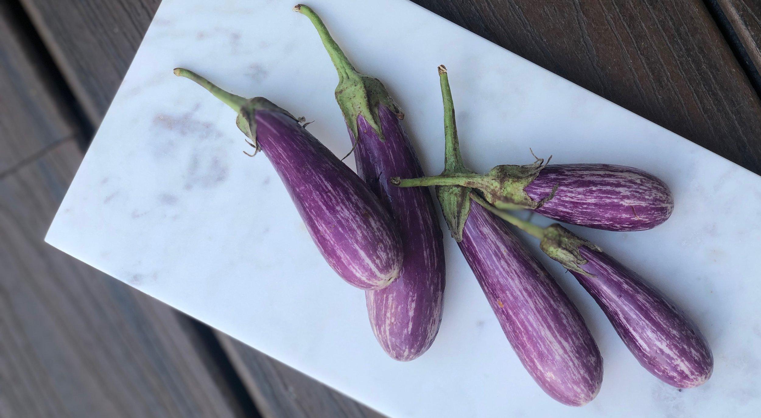 Fairytale Eggplants -  Belle Meadow - Tuscaloosa, Alabama