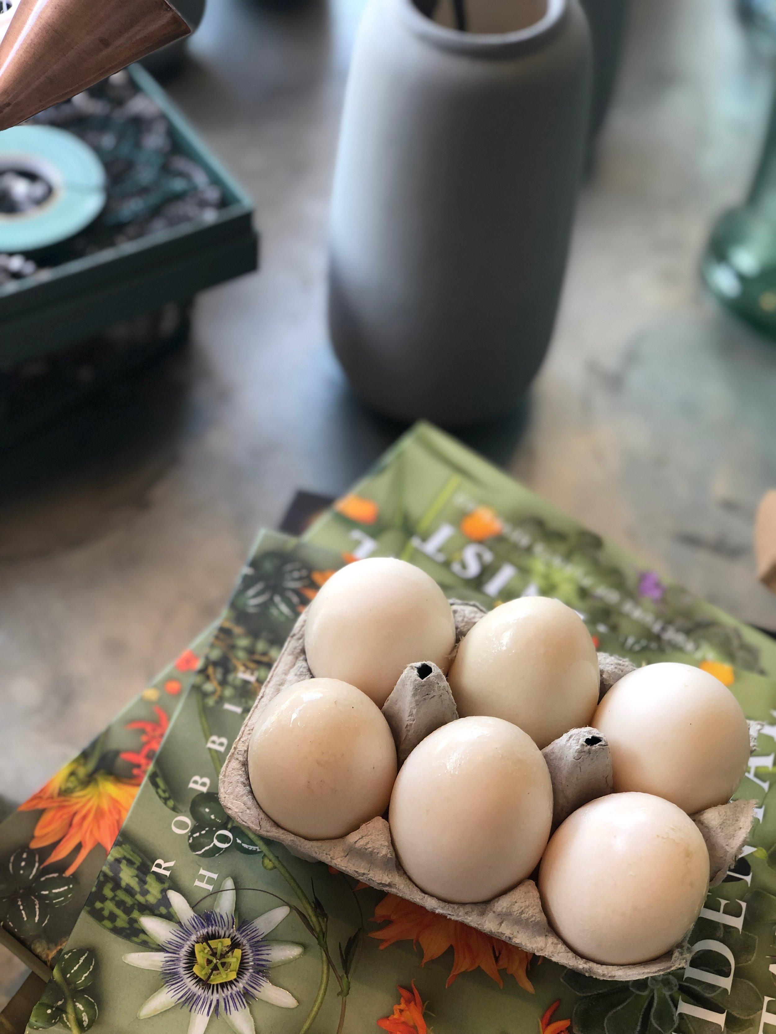 Duck Eggs / Stone Hollow FarmStead