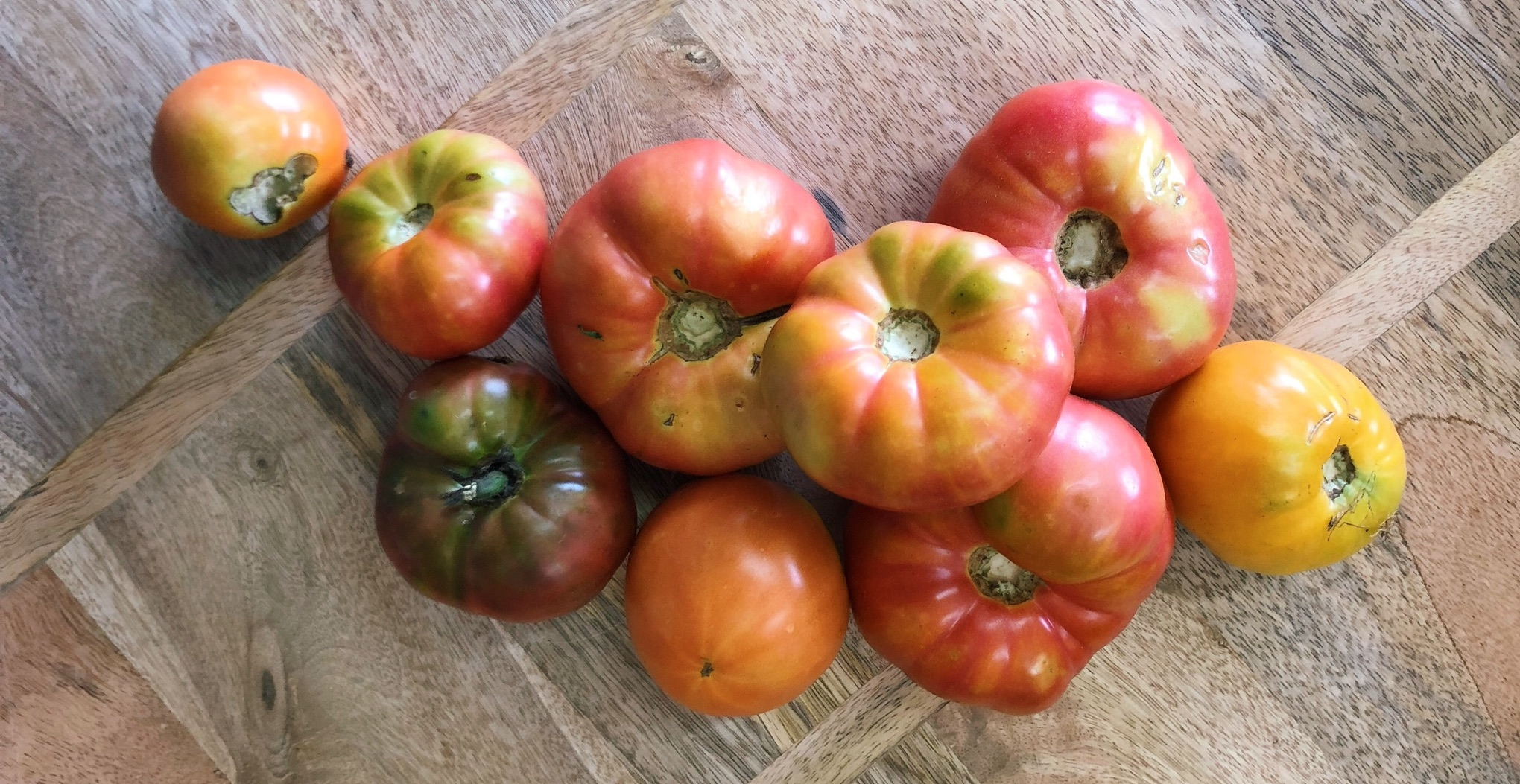 Heirloom Tomatoes -  Stone Hollow Farmstead - Harpersville, Alabama