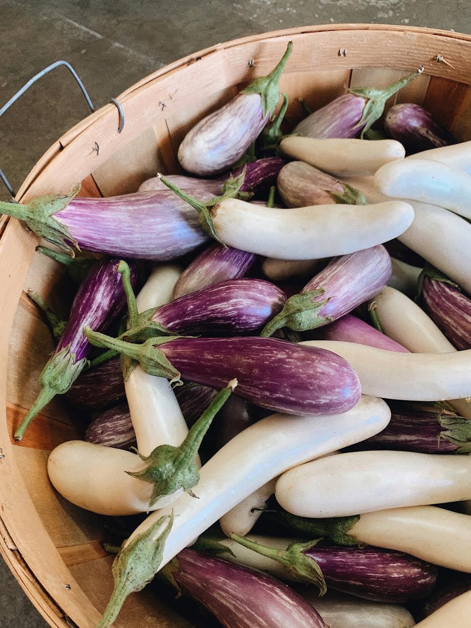Eggplant Medley /  Belle Meadow - Tuscaloosa, Alabama