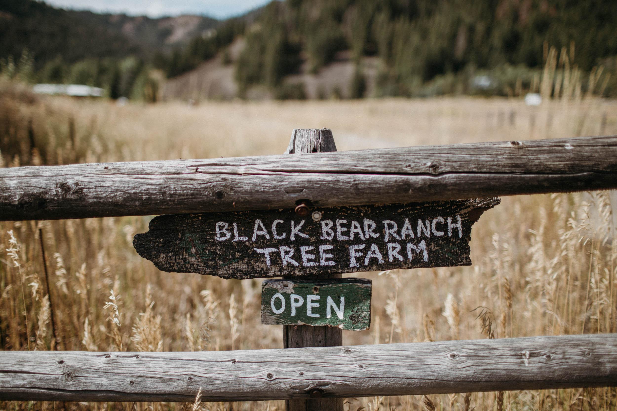 c_m_Black_bear_ranch_sunvalleywedding-1.jpg