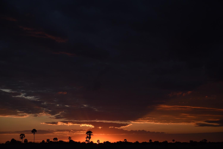 bots_sunset.jpg