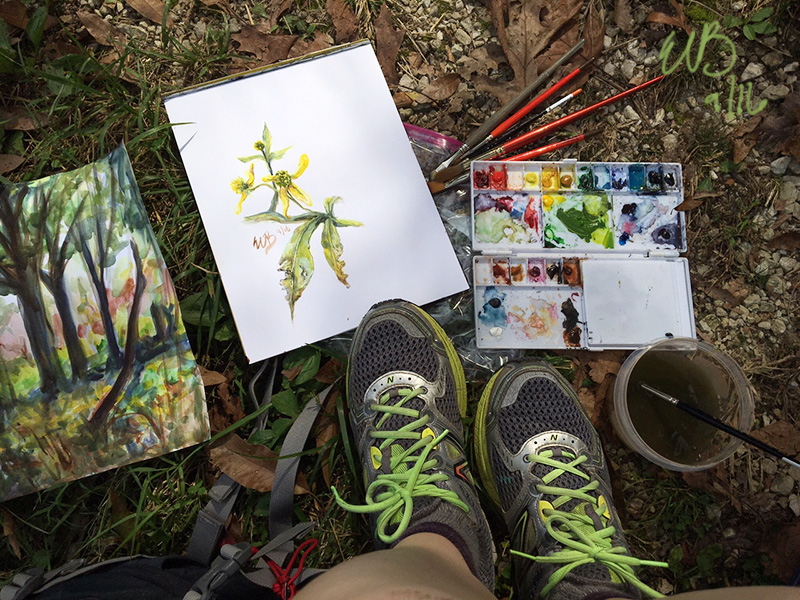 The forest landscape, flowers, my paints, and my feet. I had a comfy spot in the shade to paint. ©2016 by Erin Blumer.