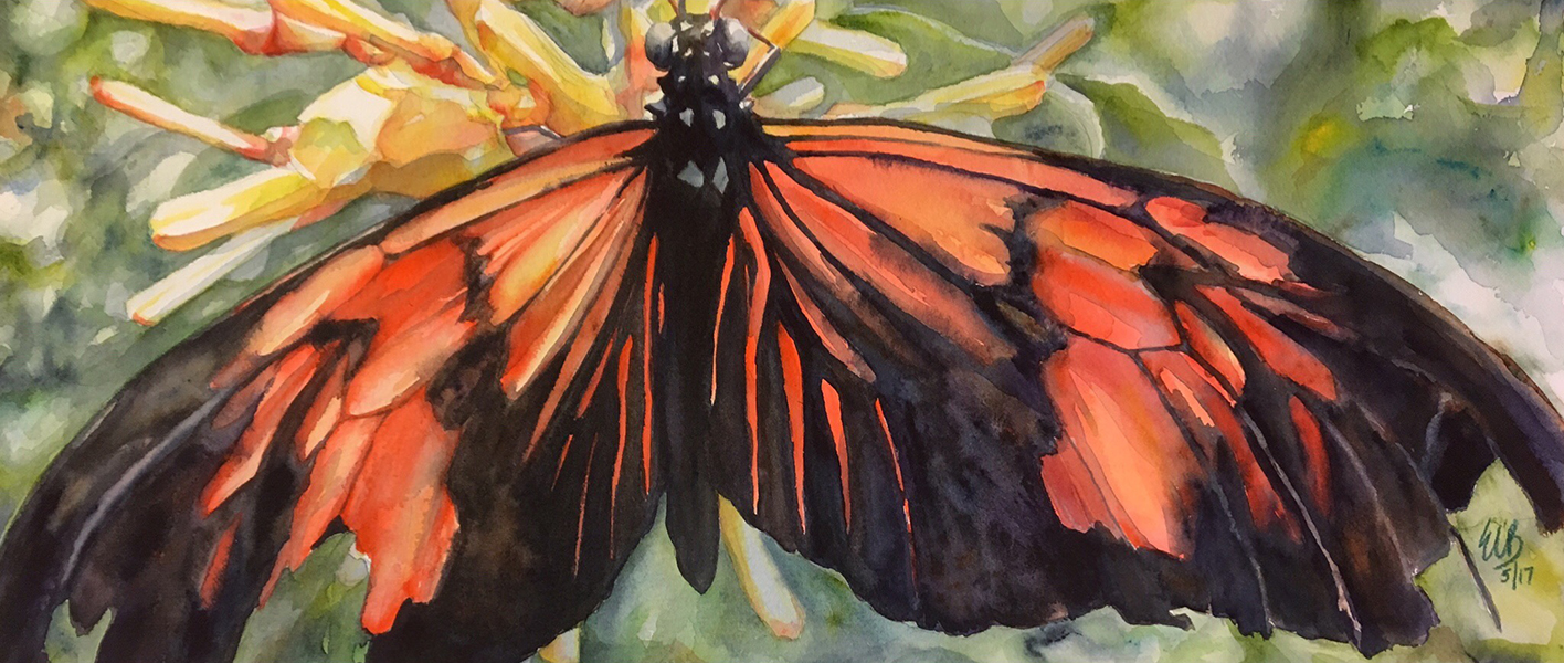 """""""Tattered Butterfly"""" Watercolor"""