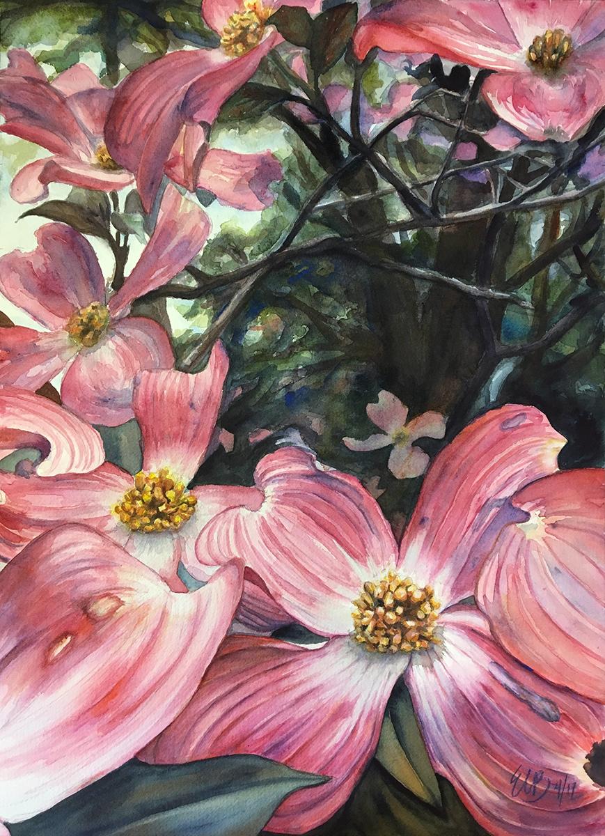 pink-dogwoods-watercolor.jpg
