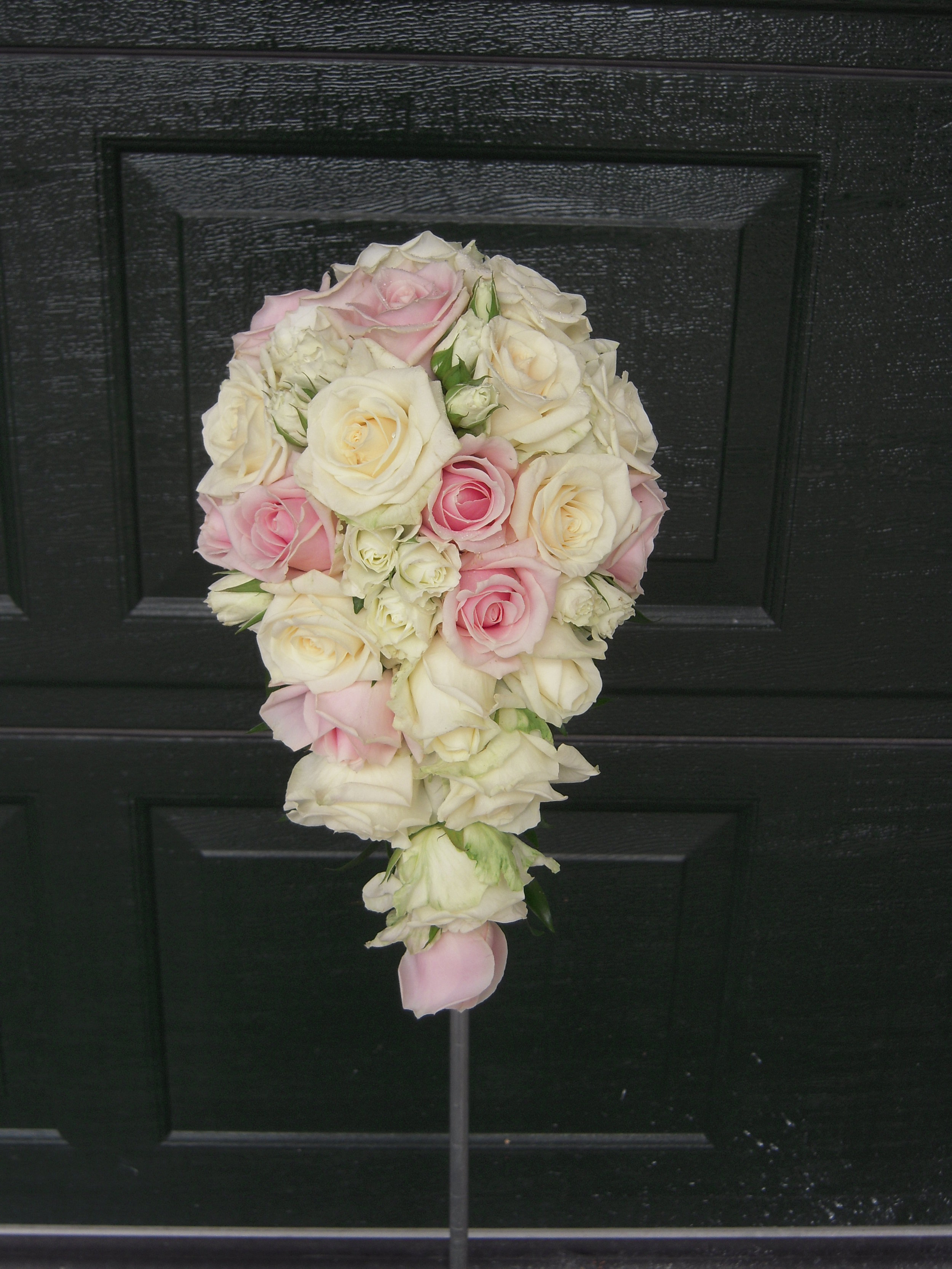 Rosa 20.JPG