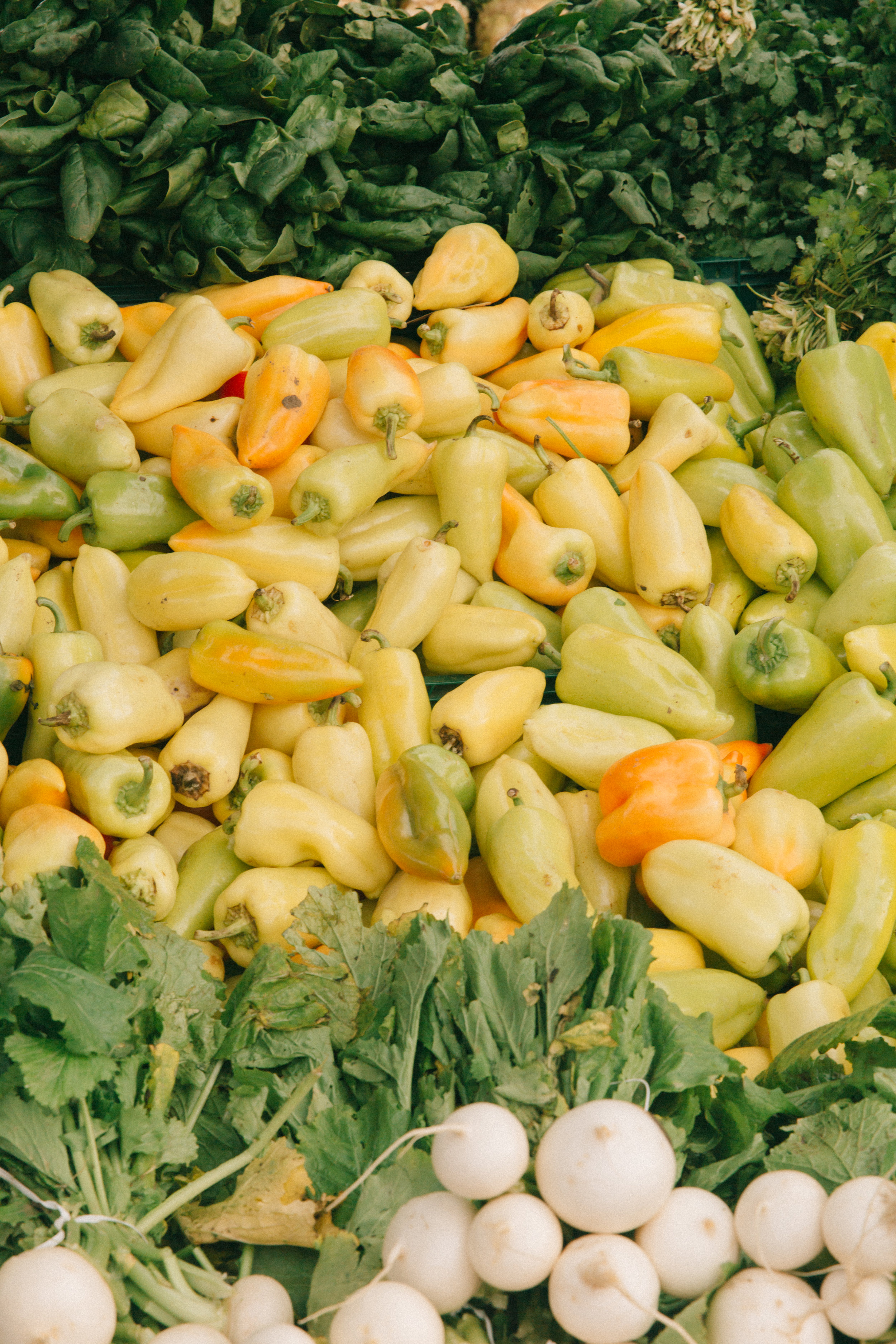 Farmers Market-4.jpg