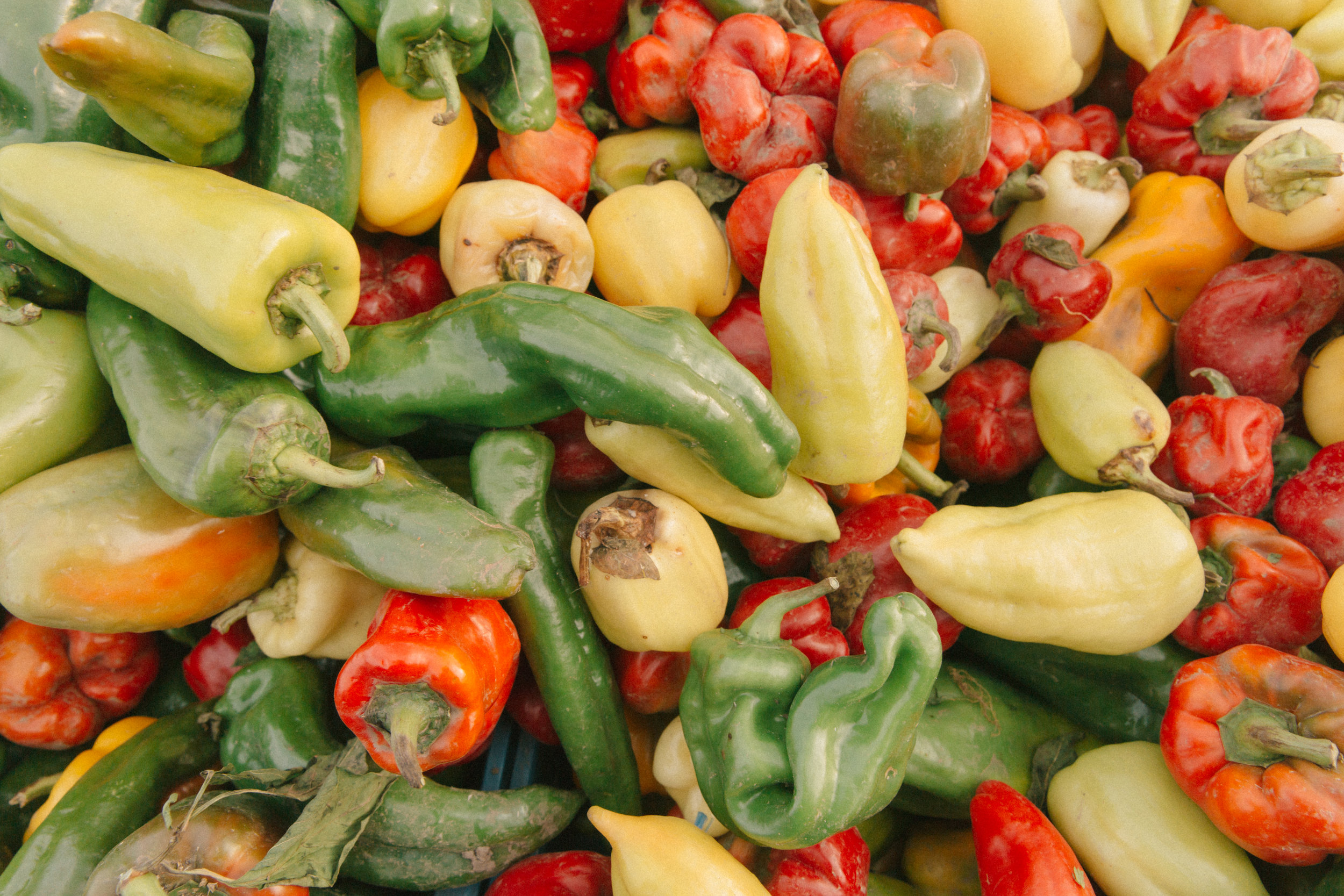 Farmers Market-3.jpg