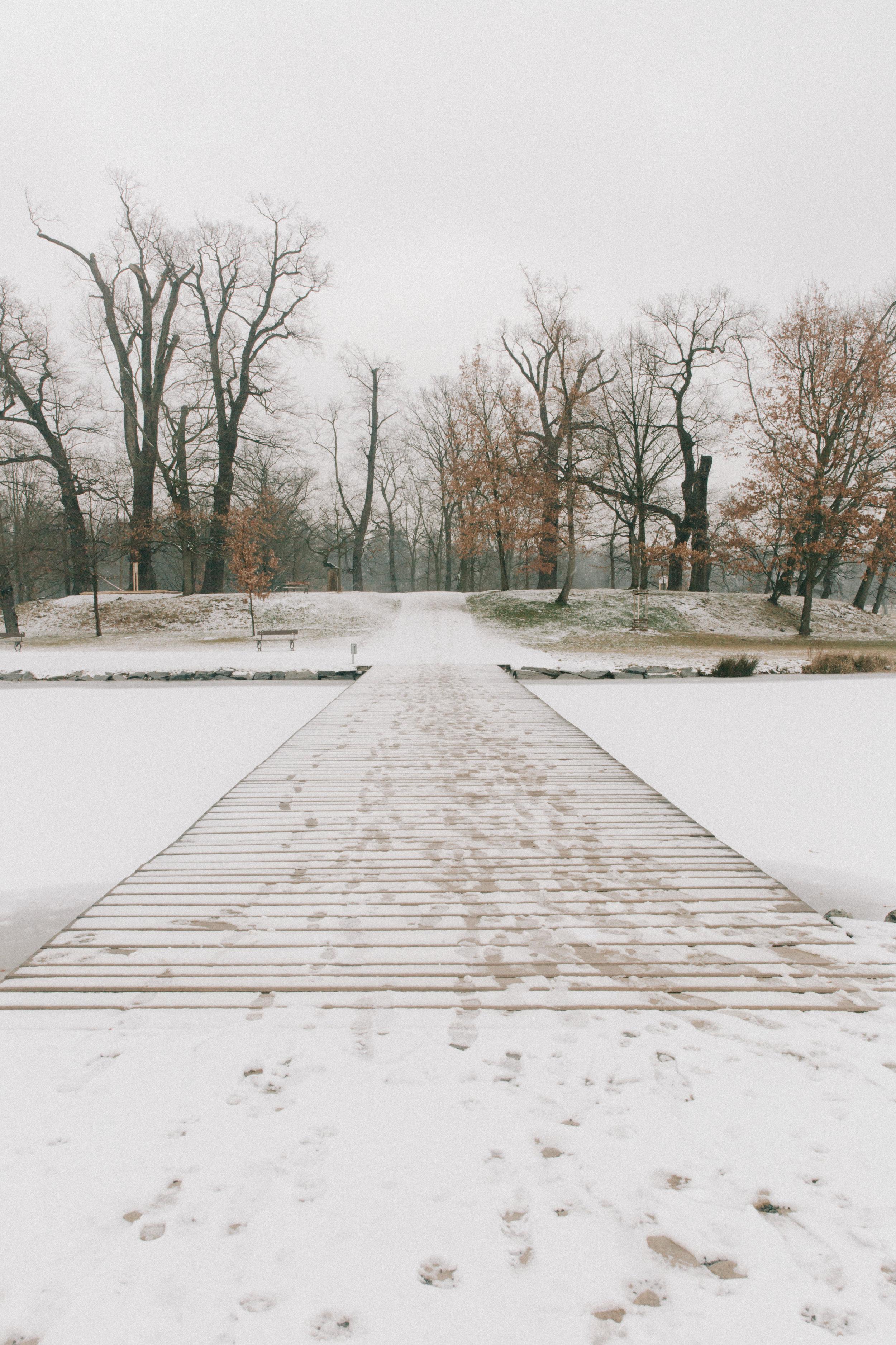 Winter-13.jpg