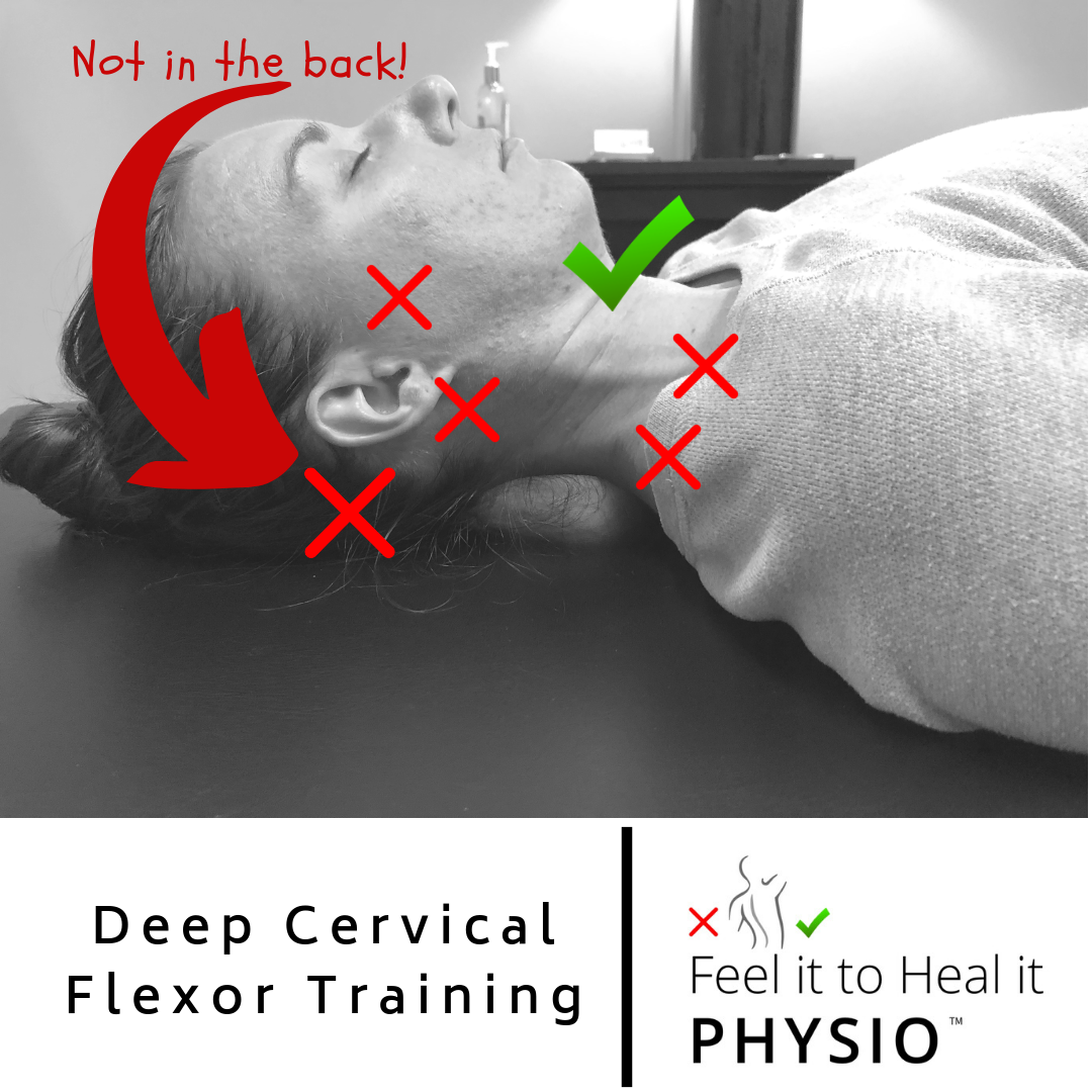 deep cervical flexor strength