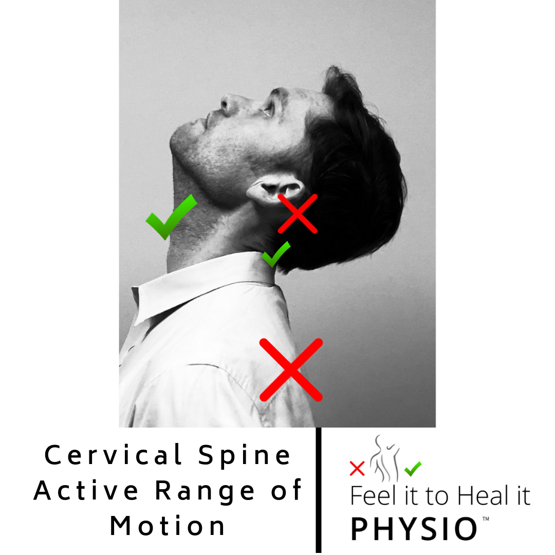 Cervical Extension Range of Motion - Normal is 70 degrees