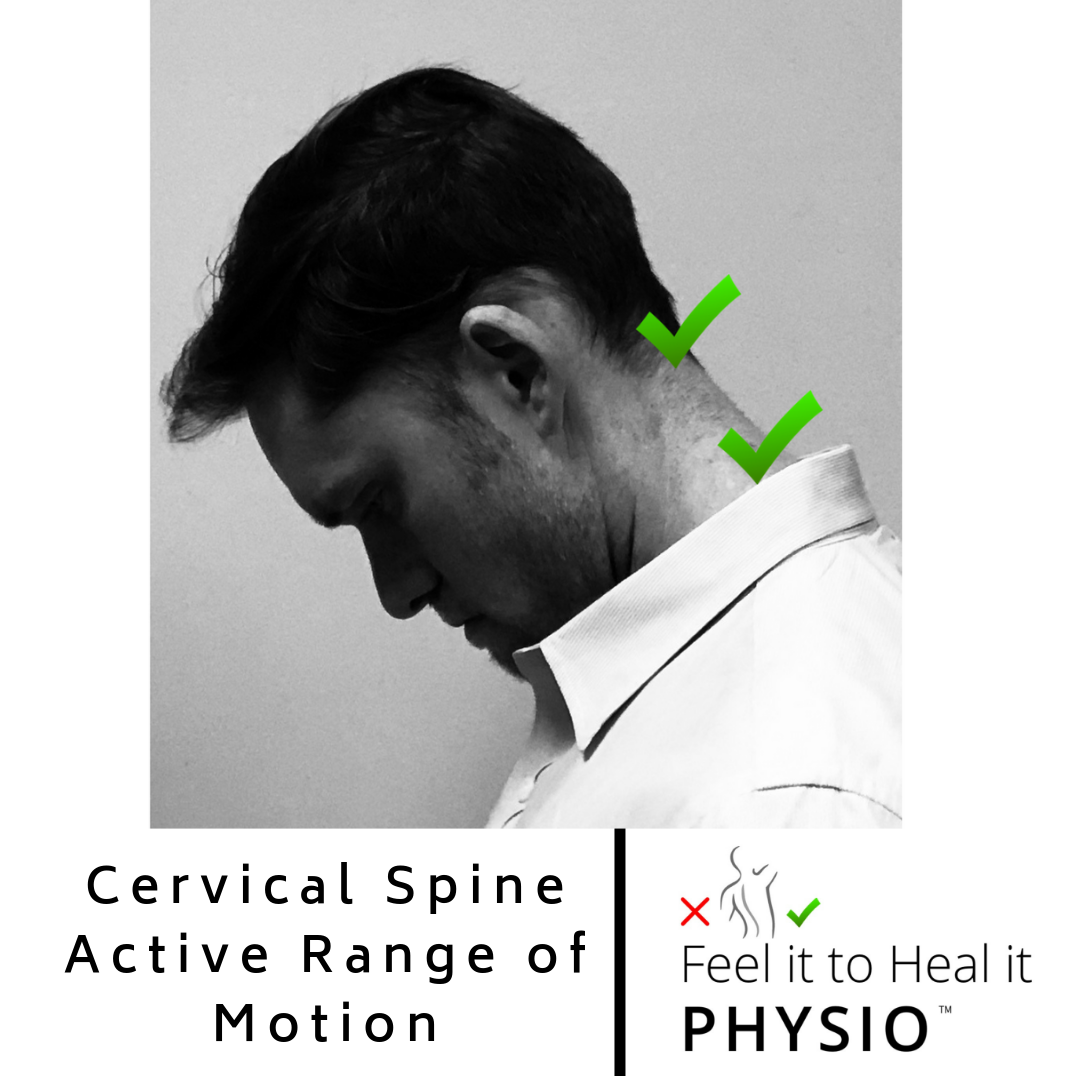 Cervical Flexion Range of Motion - Normal is 80 to 90 degrees