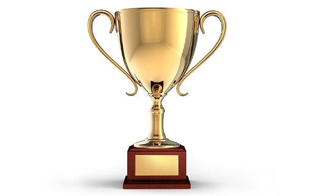 award_2743486b (1).jpg