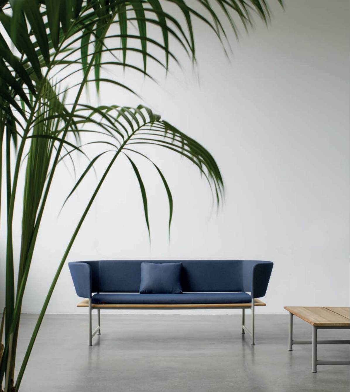 Gloster's New Atmosphere Collection