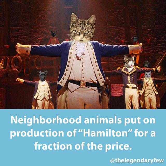 👍 Like and tag 2 friends 🙋🙋🏻♂️ if you would go see this production! 😺🐶