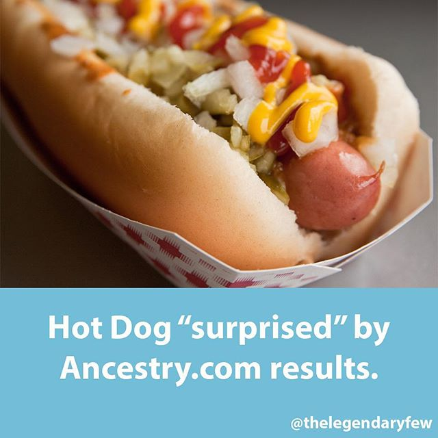 """Hot Dog surprised by Ancestry.com results."" * * * #hotdog #ancestry #ancestors #surprise #results #shocking #whoa #dna #comedy #thelegendaryfew"