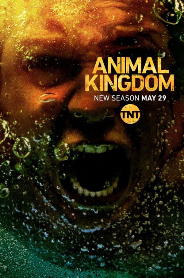 Animal-Kingdom-s3-poster-600x907 (1).jpg