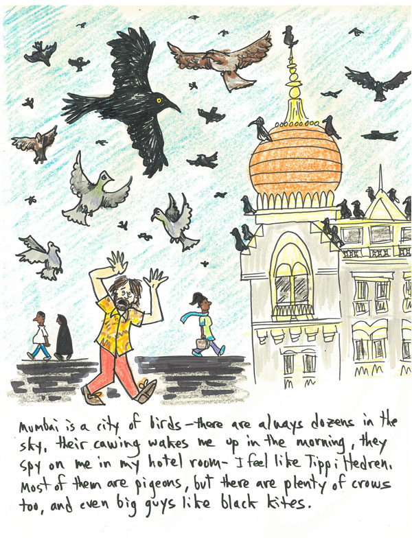 India-Cartoon-4-Birds.jpg