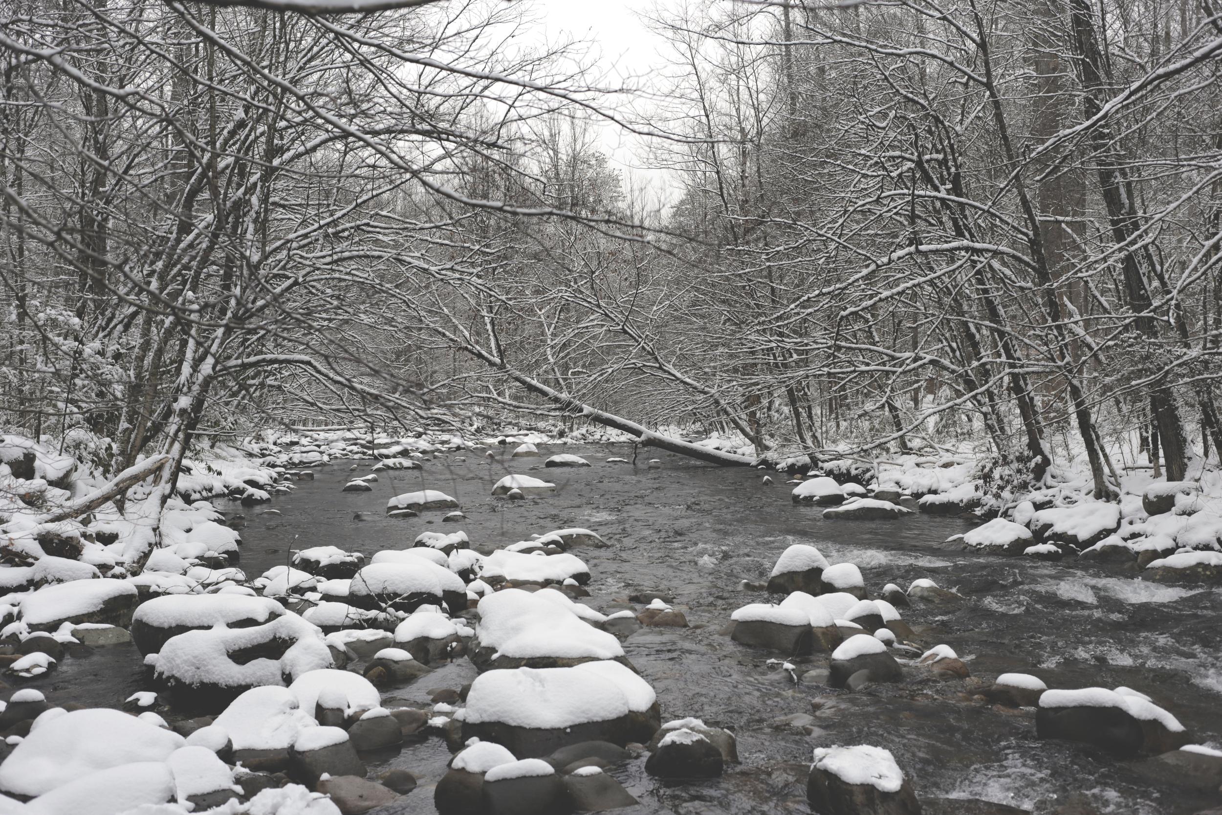 creek offset.jpg